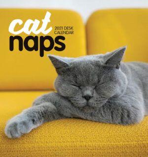 Cat Naps Easel Kalender 2021