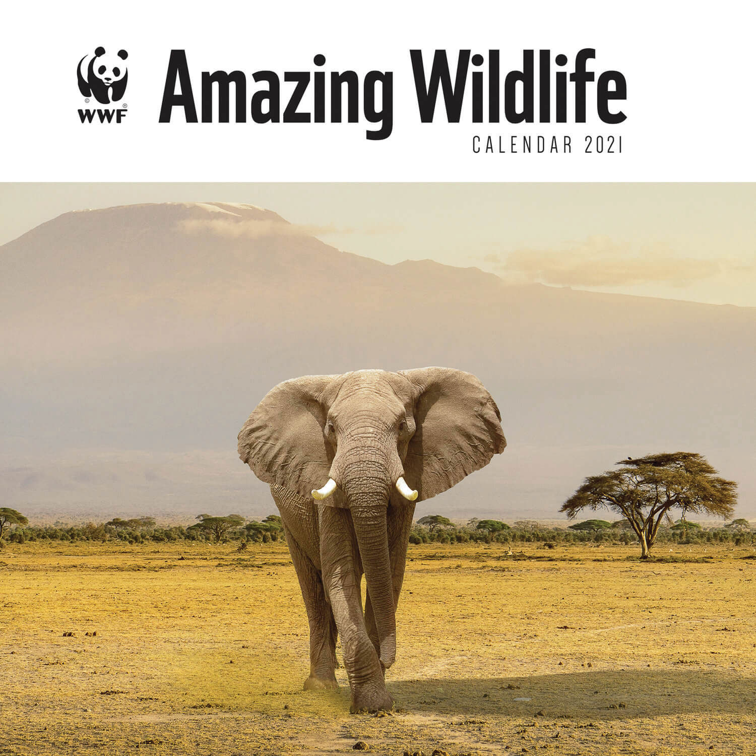 Amazing Wildlife WWF Kalender 2021