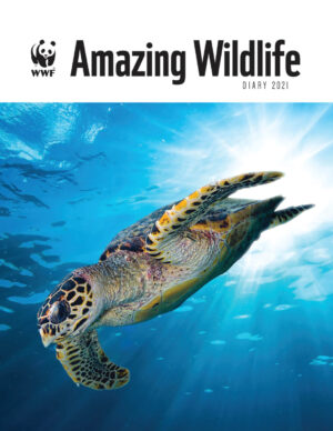 Amazing Species WWF Agenda 2021
