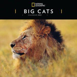 Big Cats National Geographic Kalender 2021