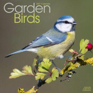 Garden Birds Kalender 2021