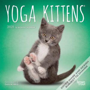 Yoga Kittens Mini Kalender 2021