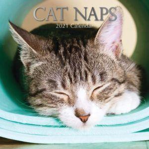 Cat Naps Kalender 2021