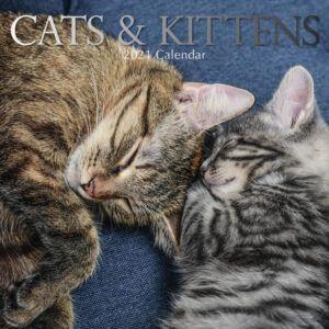 Cat & Kittens Kalender 2021
