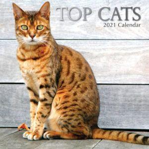 Top Cats Kalender 2021