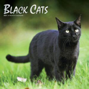 Black Cats Kalender 2021