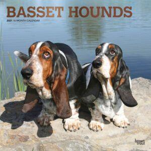 Basset Hounds Kalender 2021