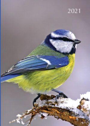 Birds Agenda 2021