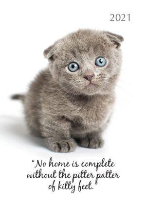 Cute Kittens Agenda 2021