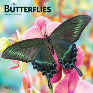 Butterflies Kalender 2021