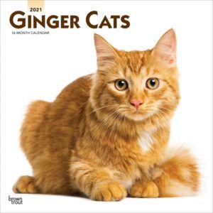 Ginger Cats Kalender 2021