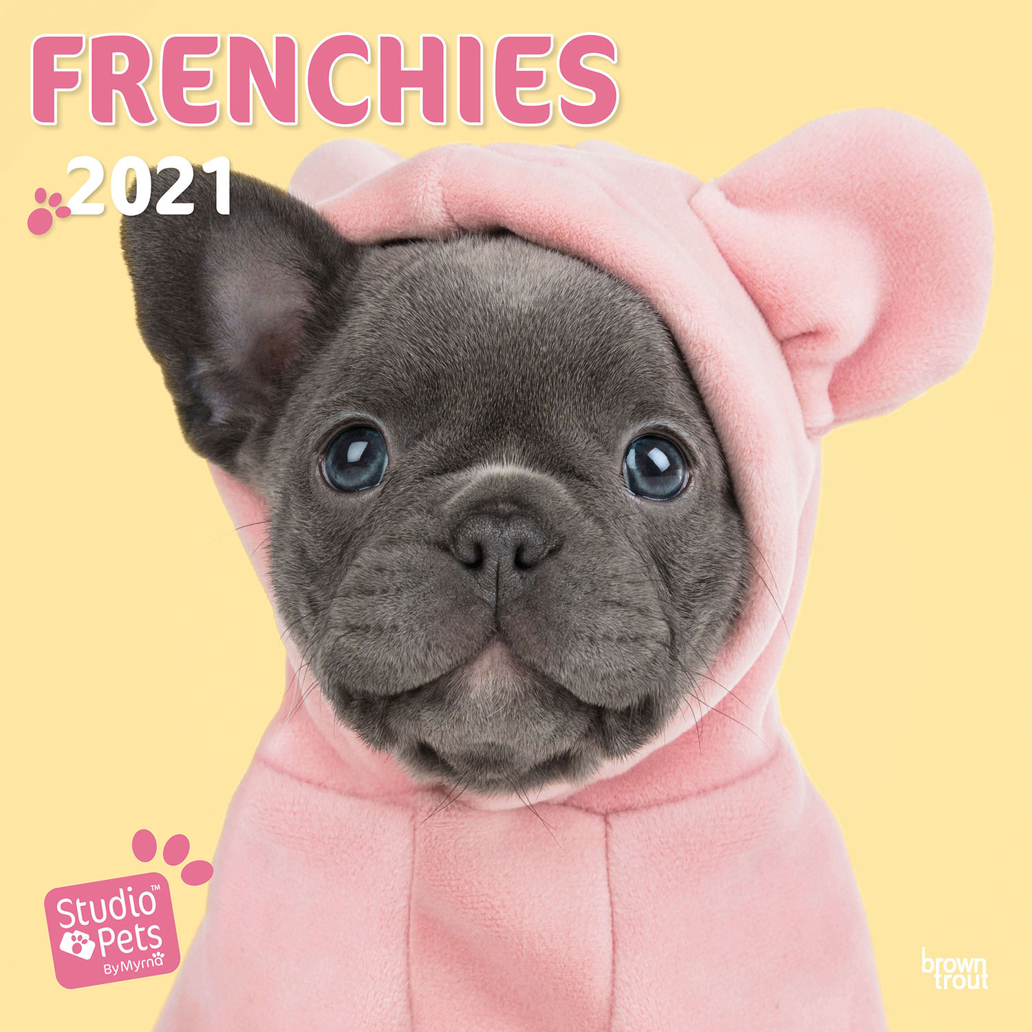 French Bulldogs Studio Pets Kalender 2021