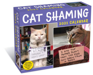 Cat Shaming Boxed Kalender 2021