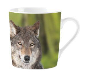 Mok Wolves
