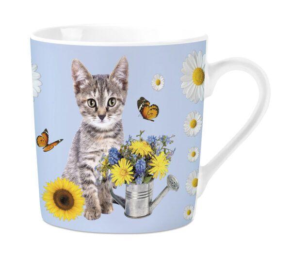 Mok Grey Tabby Cat