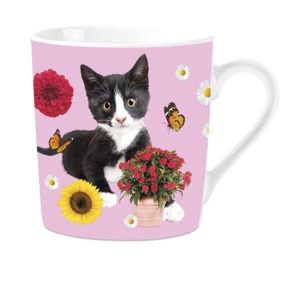 Mok Black & White Cat