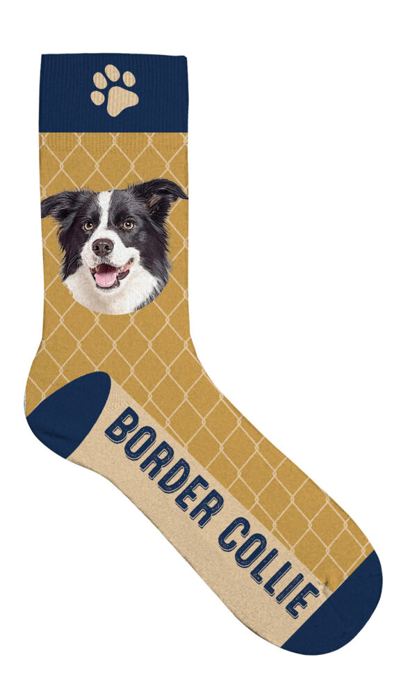 Sock Border Collie 36-41