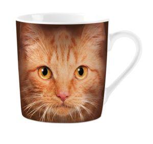 Mok Orange Cat's Eyes