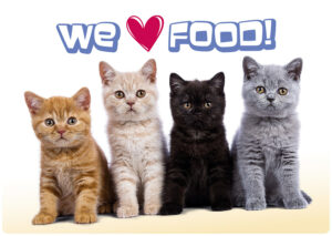 Placemat Cats We Love Food