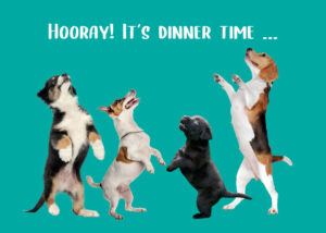 Placemat Dogs Hooray Dinner