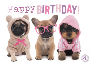 Kaart Myrna ENG Happy B 3 Dogs (h)