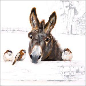 Kaart CS Donkey and Birds