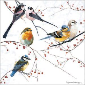 Kaart CS Birds Perching