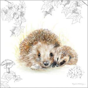 Kaart CS Hedgehogs