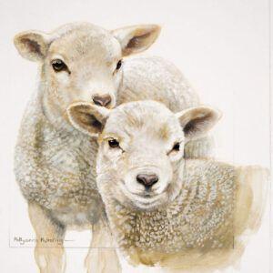 Kaart CS Cute Lambs