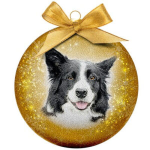 Kerstbal Frosted Classic Border Collie