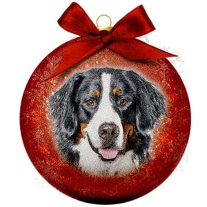 Kerstbal Frosted Classic Bernese