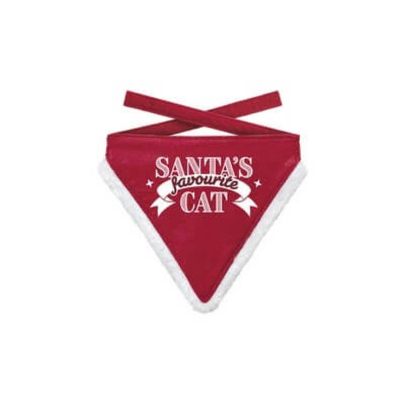Bandana S Favourite Cat 1