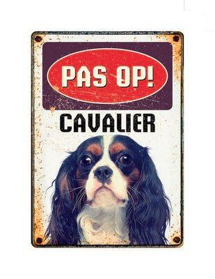Bord Blik Cavalier
