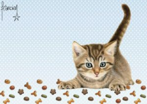 Placemat Franciens Katten Grijs