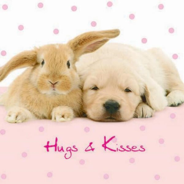 Sq Kaart Hugs and Kisses
