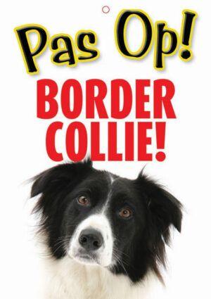 Waakbord Border Collie
