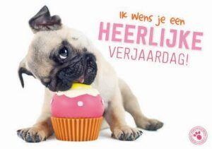 Kaart Myrna NL Heerlijke Pug Cake (h)