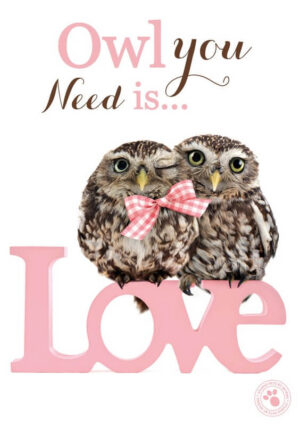 Kaart Myrna ENG Owl You Need (v)