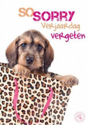 Kaart Myrna NL Sorry Verjaardag (v)