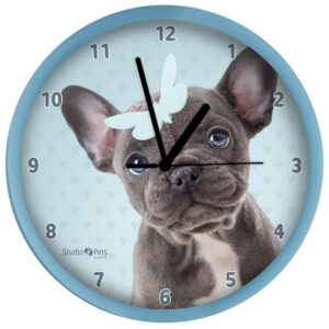 Klok French Bulldog 2