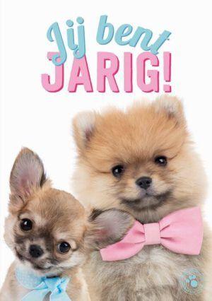 Kaart Myrna NL Jij Bent Jarig! (v)