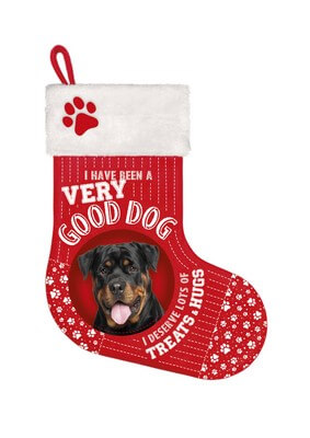Stocking Rottweiler