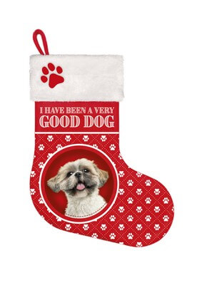 Stocking Shih Tzu
