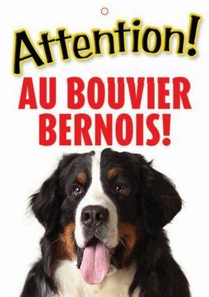 Panneau Bouvier Bernois