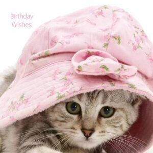 Sq Kaart Cat In The Hat