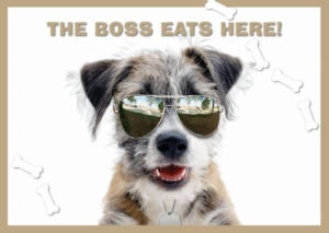 Placemat The Boss Jack Russell