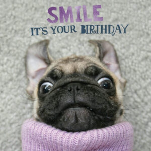 Sq Kaart Smile Pup