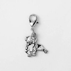 Pet Charm Berner Sennen Silver